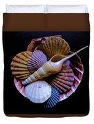 Group Of Shells #1 Duvet Cover