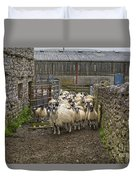 Group Yorkshire Sheep Duvet Cover