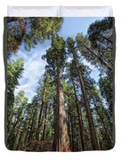 Grove Of Big Trees Duvet Cover