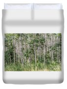 Grove Of Quaking Aspen Aka Quakies Duvet Cover