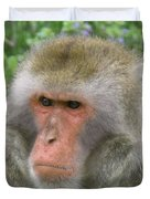 Grumpy Monkey Duvet Cover
