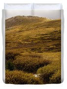 Guanella Pass Autumn Day I Duvet Cover