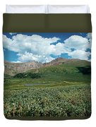 Guanella Pass Mt Bierstadt Duvet Cover by Michael Kirsh