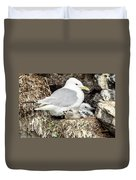 Gull Adult And Chick On Cliff Duvet Cover