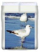 Gull - Beach -reflection Duvet Cover