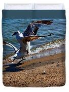 Gull Fight Duvet Cover by Amanda Struz