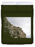 Gull Island Duvet Cover
