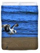 Gull On The Beach  Duvet Cover
