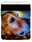 Gus As Photo Assistant 3504t2 Duvet Cover