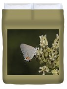 Hairstreak Butterfly Duvet Cover