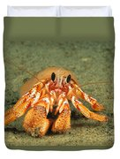 Hairy Hermit Crab Duvet Cover