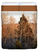 Halfway Up Sunset Rays Duvet Cover
