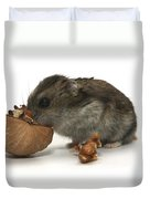 Hamster Eating A Walnut  Duvet Cover