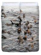 Happy Harbour Seals Duvet Cover