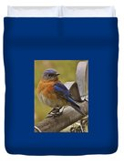 Happy New Year Male Bluebird Duvet Cover