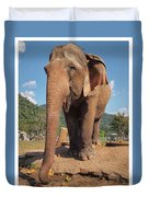 Happy Thai Elephant In Chiang Mai Duvet Cover