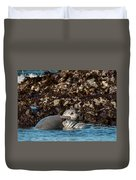 Harbor Seal And Pup Duvet Cover