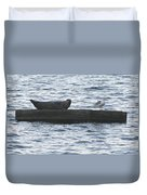 Harbor Seal Hangin With A Friend Duvet Cover
