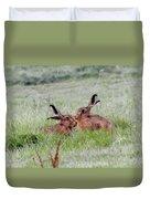 Hare 2 Day Duvet Cover