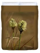 Hare's-tail Cottongrass 1 Duvet Cover