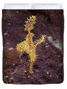 Harlequin Ghost Pipefish - Solenostomus Paradoxus Duvet Cover