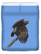 Harris Hawk - Transparent Duvet Cover