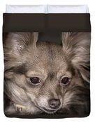 Hattie--foxy Chihuahua Duvet Cover