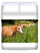 Hawaiian Horses In Sugar Cane Duvet Cover