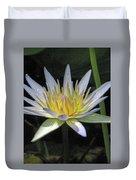 Hawaiian Water Lily 05 - Kauai, Hawaii Duvet Cover