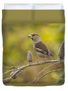 Hawfinch Coccothraustes Coccothraustes Duvet Cover