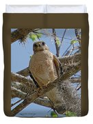 Hawk Gawk Duvet Cover