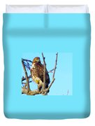 Hawk In A Tree Duvet Cover