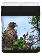 Hawk In The Tree Duvet Cover