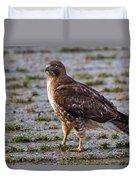 Hawk On A Walk Duvet Cover