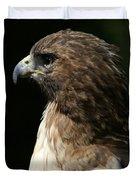 Hawk Portrait Duvet Cover