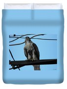 Hawk Urban Hunting Duvet Cover