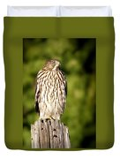 Hawk Waiting For Prey Duvet Cover