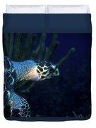 Hawksbill Sea Turtle 2 Duvet Cover
