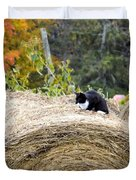 Hay Kitty Duvet Cover