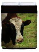 Head Of A Bull On A Farm Duvet Cover