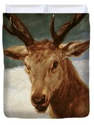 Head Of A Stag Duvet Cover