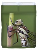 Head Of The Dragonfly Duvet Cover