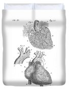 Heart Anatomy, Illustration, 1703 Duvet Cover