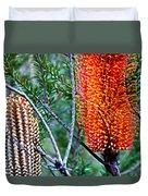 Heath Banksia From Fairfax Walk Duvet Cover