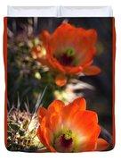 Hedgehog Flowers In Dawn's Early Light  Duvet Cover
