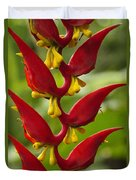 Heliconia Dielsiana Duvet Cover