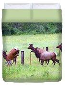 Herd Of Elk Leaping - Western Oregon Duvet Cover