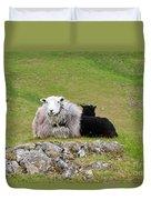 Herdwick Sheep On A Hillside In Cumbria Duvet Cover