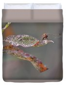 Here's Lookin' At You- Dragonfly Duvet Cover