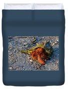 Hermit Crab- Florida Duvet Cover